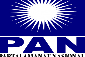 Logo PAN (Int)